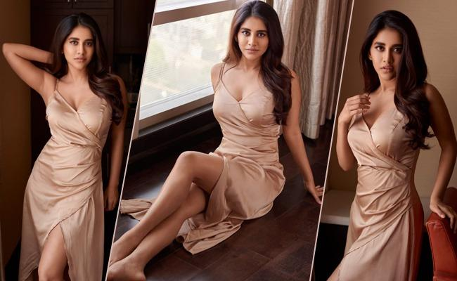 Absolutely Stunning!! Nabha Natesh Latest Photoshoot!