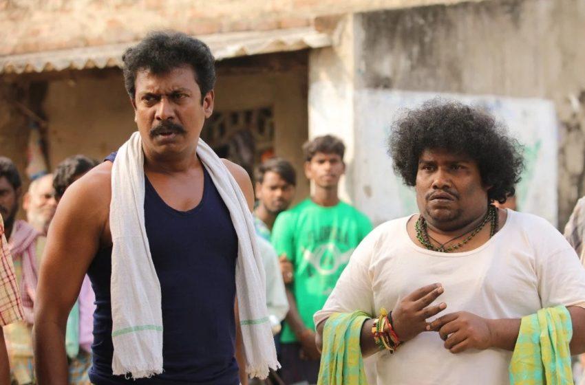#சமுத்திரகனி நடிக்கும் '#வெள்ளையானை'.. பிரபல டிவி சேனலில் நேரடி ரிலீஸ்!