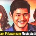 Nenjamellam Palavannam Movie Audio Launch