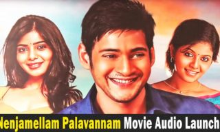 Nenjamellam Palavannam Movie Audio Launch