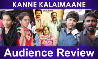 kanne Kalaimane review